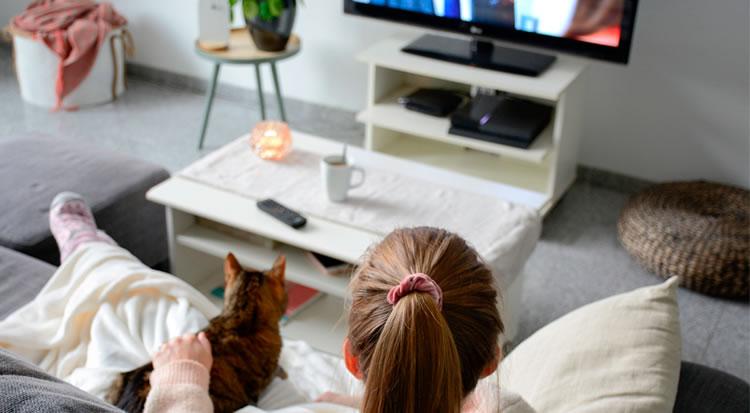 Право, стиль, сериалы и телепутешествия! Новые телеканалы
